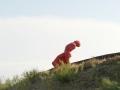 L'homme, ce colosse aux pieds d'argile